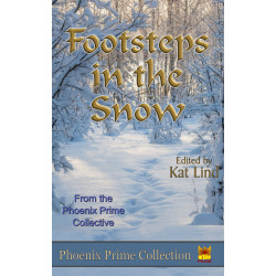Footsteps in the Snow - A New Anthology